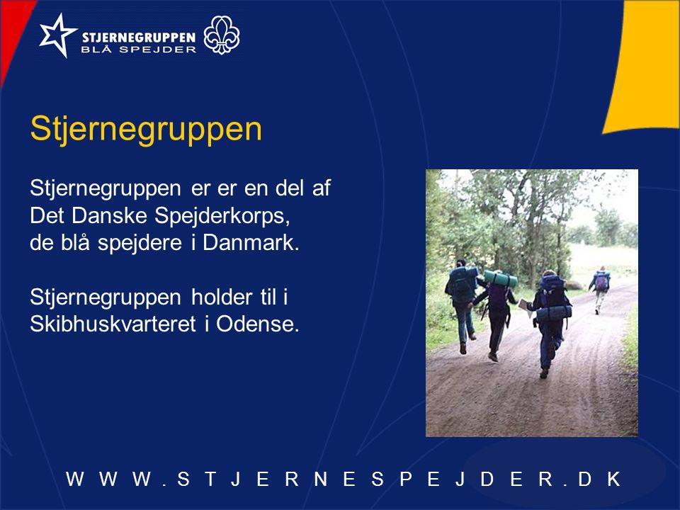 Stjernegruppen Stjernegruppen er er en del af Det Danske Spejderkorps, de blå spejdere i Danmark.