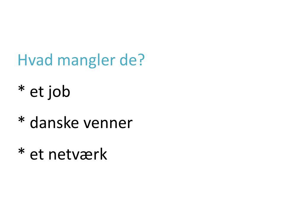 Hvad mangler de * et job * danske venner * et netværk