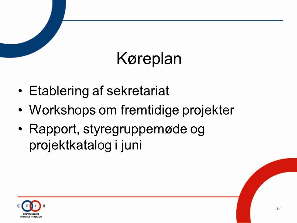 14 Køreplan •Etablering af sekretariat •Workshops om fremtidige projekter •Rapport, styregruppemøde og projektkatalog i juni