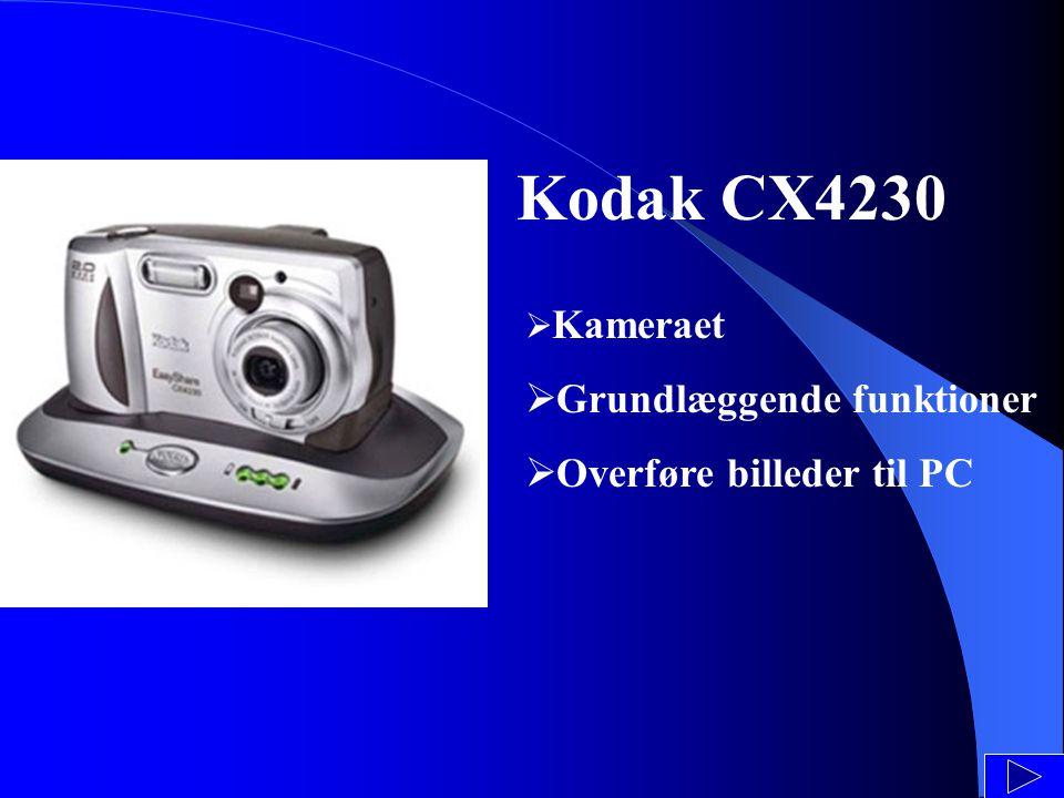 Kodak CX4230  Kameraet  Grundlæggende funktioner  Overføre billeder til PC