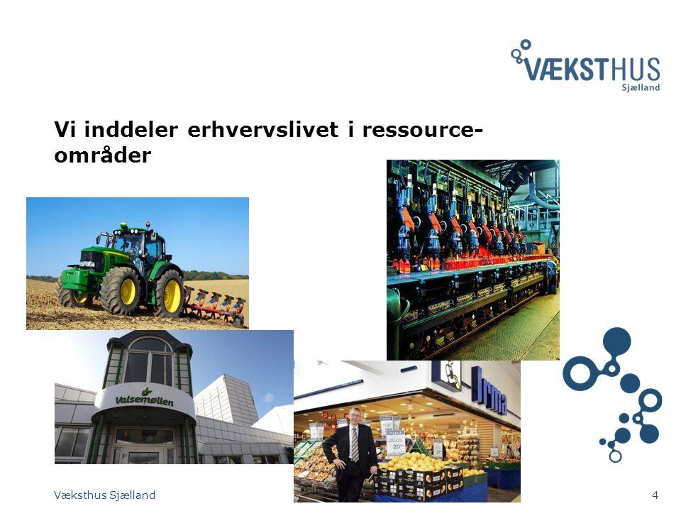 Vi inddeler erhvervslivet i ressource- områder Væksthus Sjælland4