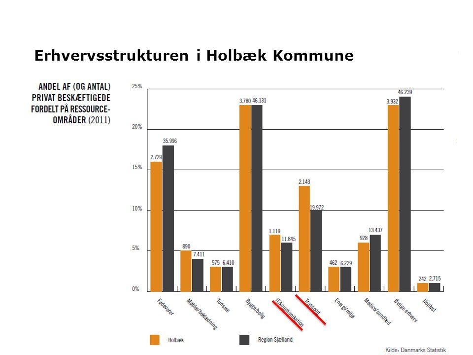 5 Erhvervsstrukturen i Holbæk Kommune