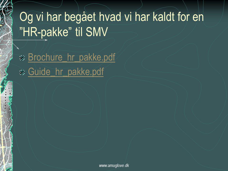 www.amuglove.dk Og vi har begået hvad vi har kaldt for en HR-pakke til SMV Brochure_hr_pakke.pdf Guide_hr_pakke.pdf