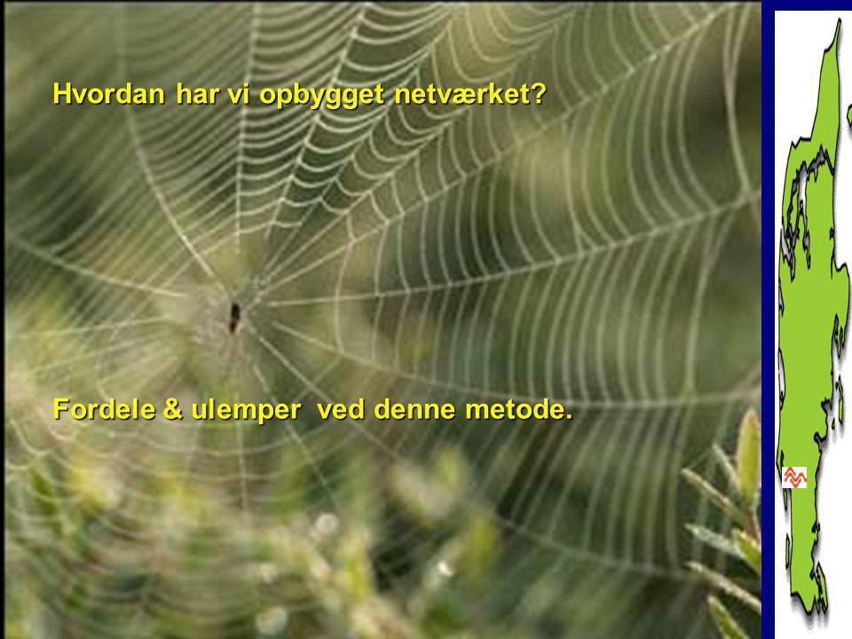www.amuglove.dk Hvordan har vi opbygget netværket Fordele & ulemper ved denne metode.
