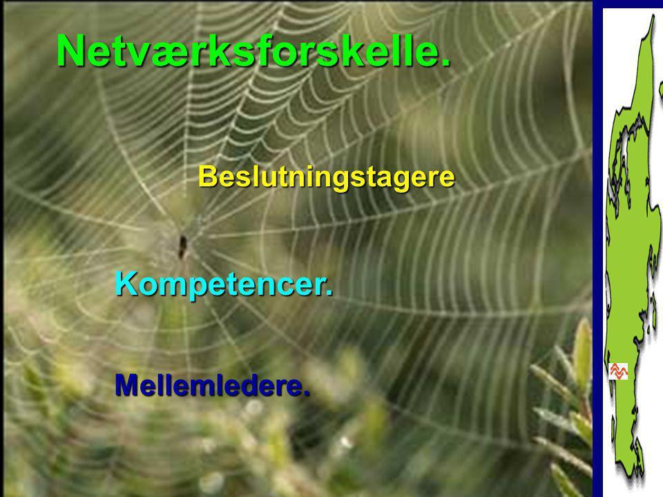 www.amuglove.dk Netværksforskelle. Beslutningstagere Mellemledere. Kompetencer.