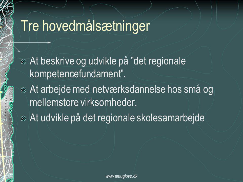 www.amuglove.dk Tre hovedmålsætninger At beskrive og udvikle på det regionale kompetencefundament .