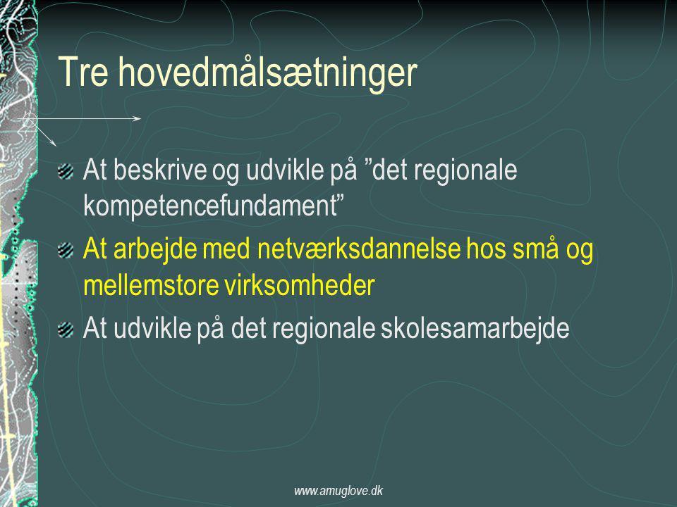 www.amuglove.dk Tre hovedmålsætninger At beskrive og udvikle på det regionale kompetencefundament At arbejde med netværksdannelse hos små og mellemstore virksomheder At udvikle på det regionale skolesamarbejde