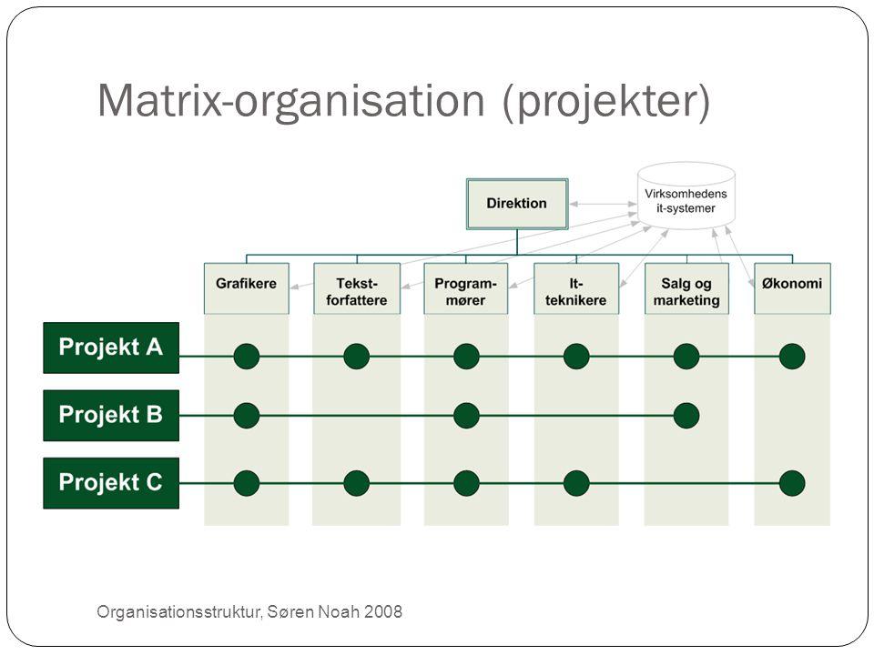 Matrix-organisation (projekter) 21 Organisationsstruktur, Søren Noah 2008