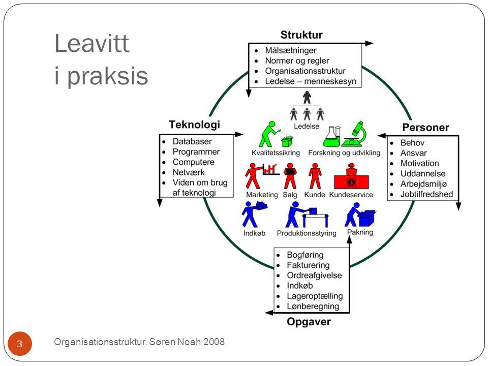 Leavitt i praksis Organisationsstruktur, Søren Noah 2008 3