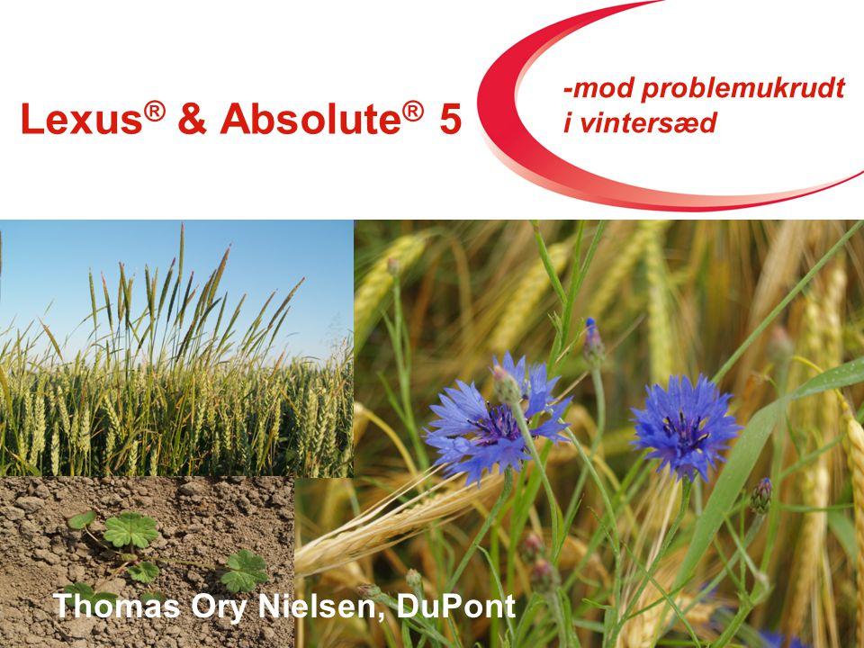 Lexus ® & Absolute ® 5 Strategi 2009 Thomas Ory Nielsen, DuPont -mod problemukrudt i vintersæd