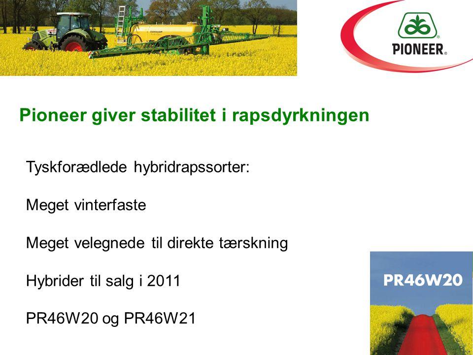 Pioneer giver stabilitet i rapsdyrkningen Tyskforædlede hybridrapssorter: Meget vinterfaste Meget velegnede til direkte tærskning Hybrider til salg i 2011 PR46W20 og PR46W21