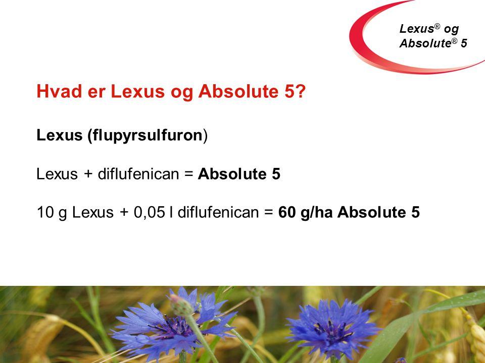 Lexus ® og Absolute ® 5 Hvad er Lexus og Absolute 5.