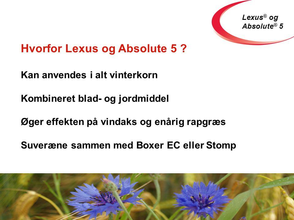 Lexus ® og Absolute ® 5 Hvorfor Lexus og Absolute 5 .