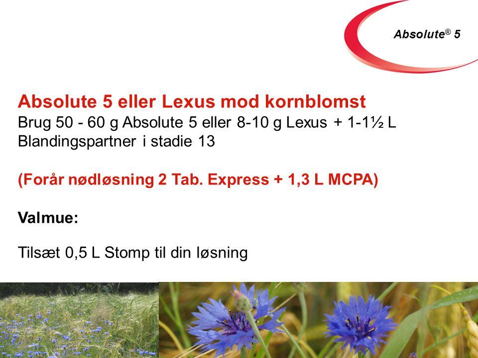 Absolute 5 eller Lexus mod kornblomst Brug 50 - 60 g Absolute 5 eller 8-10 g Lexus + 1-1½ L Blandingspartner i stadie 13 (Forår nødløsning 2 Tab.