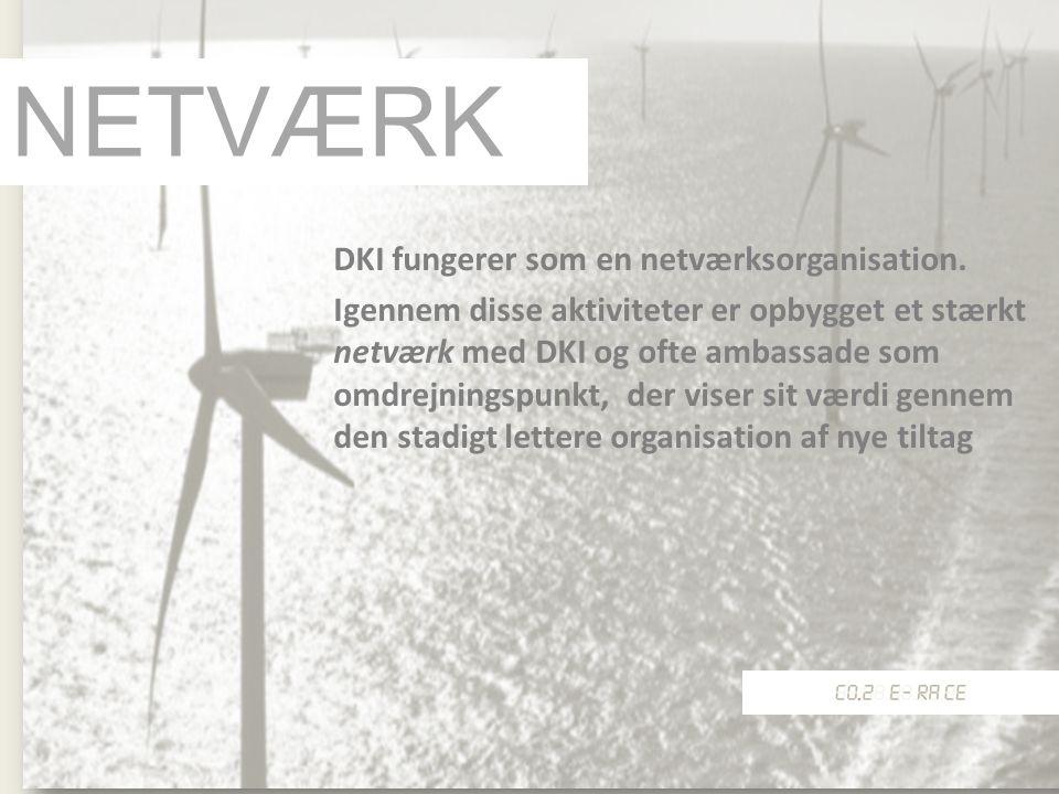 NETVÆRK DKI fungerer som en netværksorganisation.