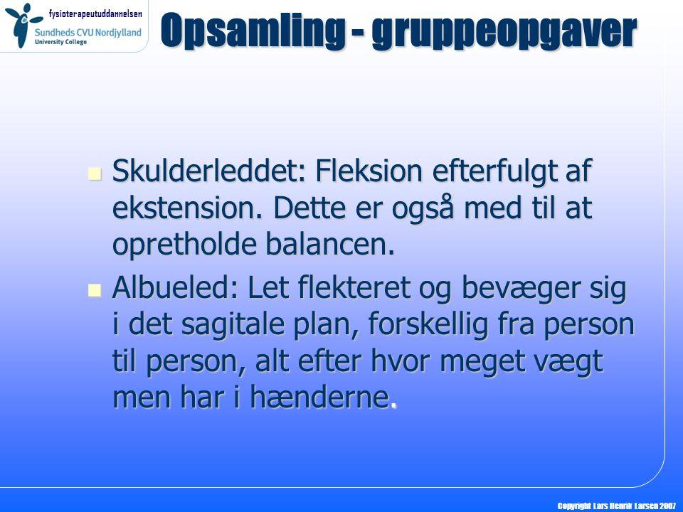 fysioterapeutuddannelsen Copyright Lars Henrik Larsen 2007  Skulderleddet: Fleksion efterfulgt af ekstension.