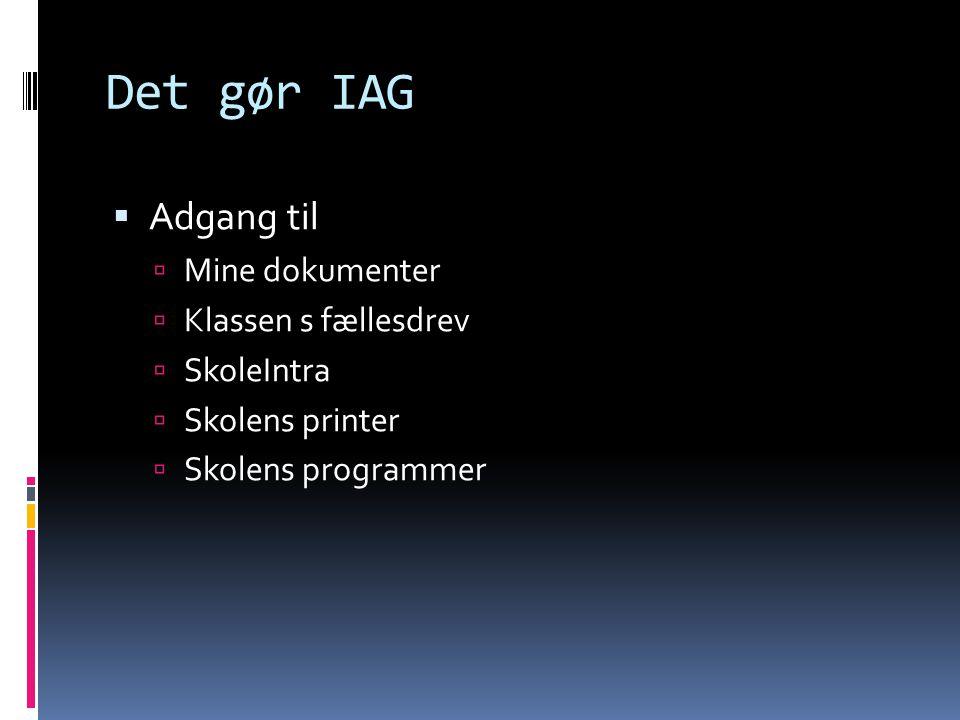 Det gør IAG  Adgang til  Mine dokumenter  Klassen s fællesdrev  SkoleIntra  Skolens printer  Skolens programmer
