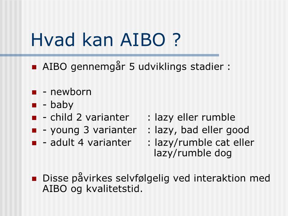 Hvad kan AIBO .