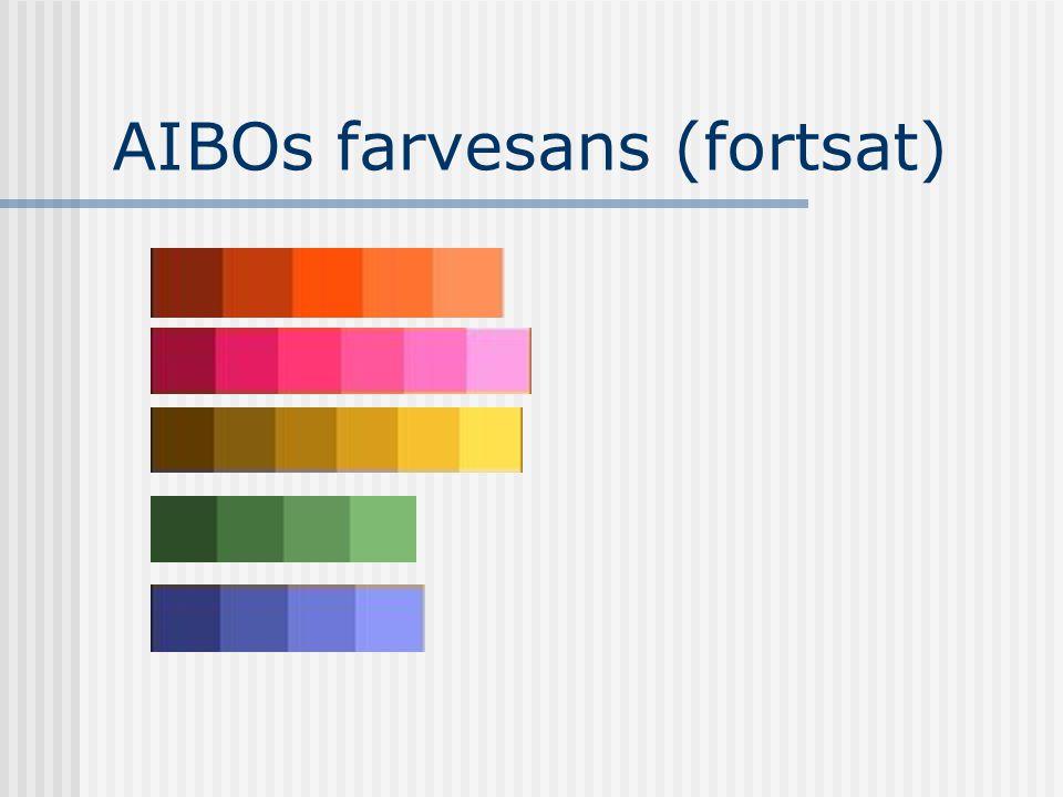 AIBOs farvesans (fortsat)