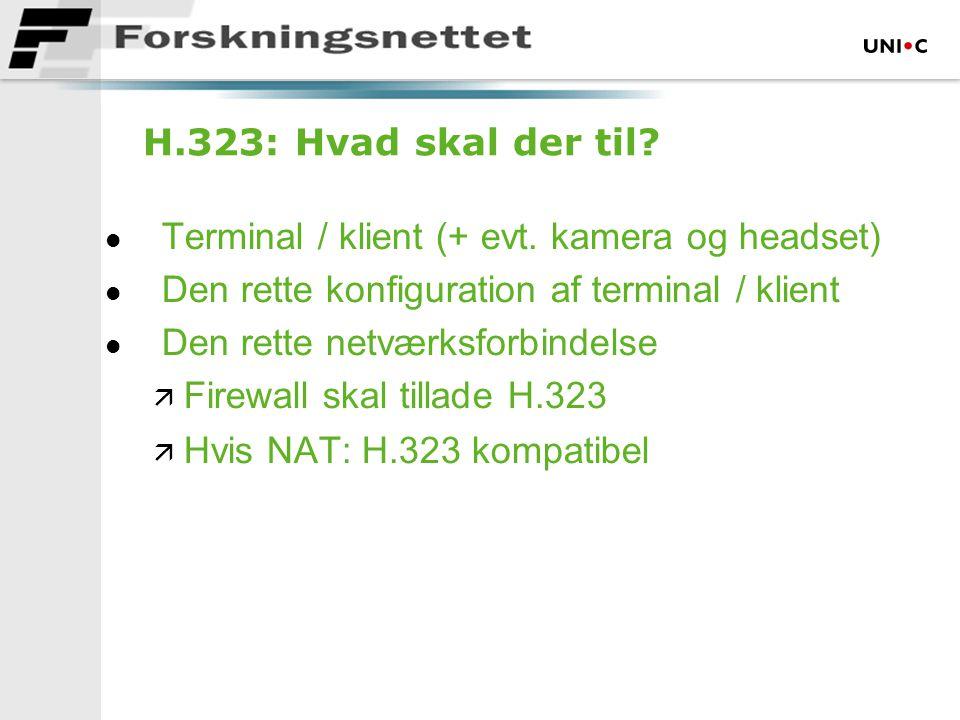 H.323: Hvad skal der til.  Terminal / klient (+ evt.