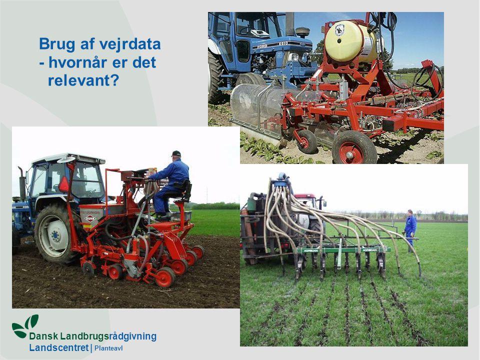 Dansk Landbrugsrådgivning Landscentret | Planteavl Brug af vejrdata - hvornår er det relevant