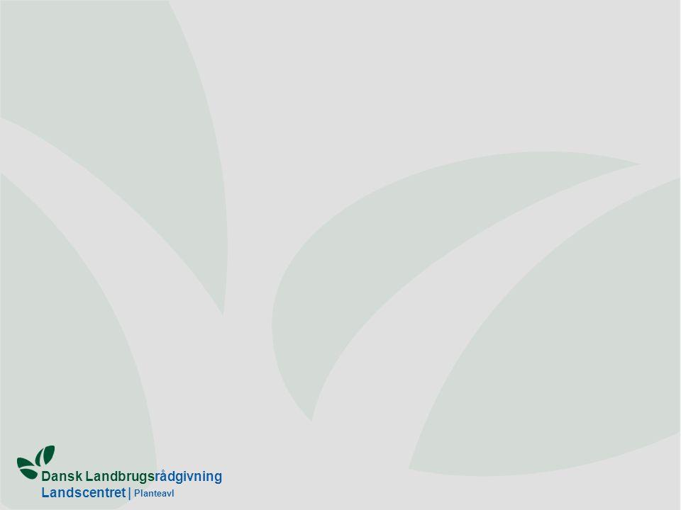 Dansk Landbrugsrådgivning Landscentret | Planteavl
