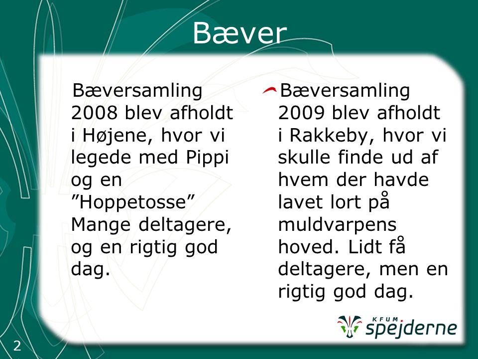 2 Bæver Bæversamling 2008 blev afholdt i Højene, hvor vi legede med Pippi og en Hoppetosse Mange deltagere, og en rigtig god dag.