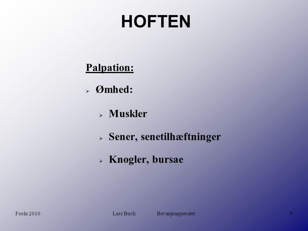 Forår 2010Lars Buch Bevægeapperatet6 HOFTEN Håndgreb og tests: Patrick s FABERE test Flexion ABduktion Extern Rotation (Extension) Test for smerte svt SI-led.