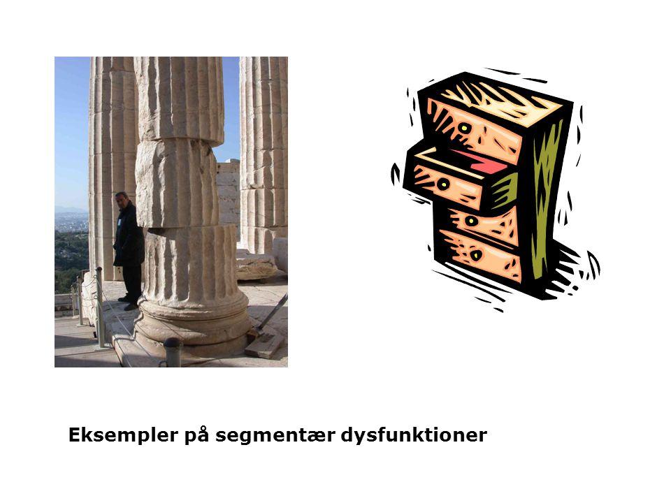 Eksempler på segmentær dysfunktioner