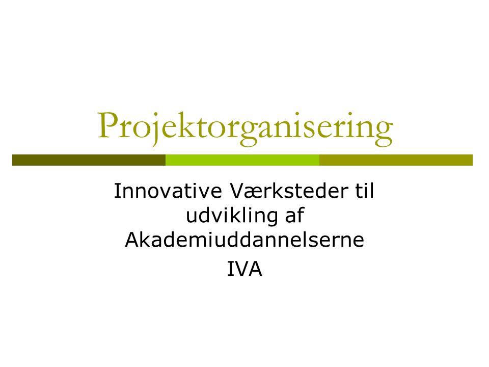 Projektorganisering Innovative Værksteder til udvikling af Akademiuddannelserne IVA