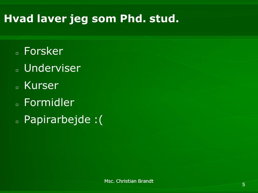 Msc. Christian Brandt 5 Hvad laver jeg som Phd. stud.