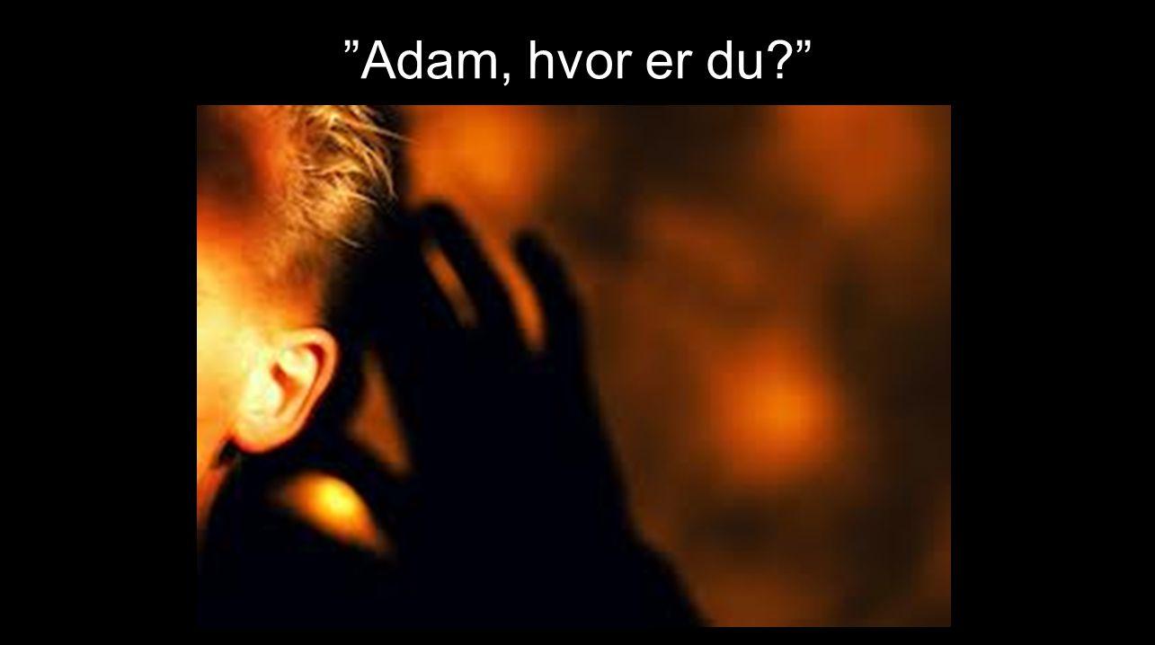"""""""Adam, hvor er du?"""" ……………."""