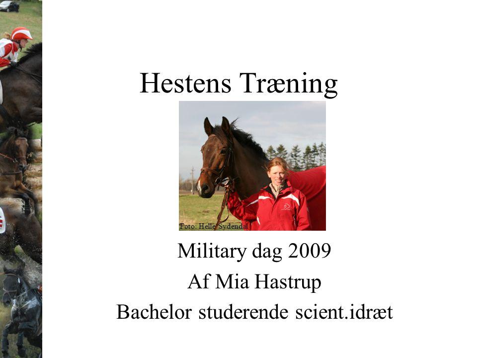 Hestens Træning Military dag 2009 Af Mia Hastrup Bachelor studerende scient.idræt Foto: Helle Sydendal