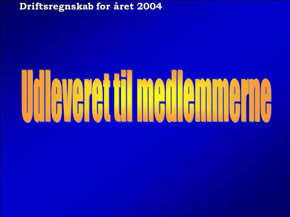 Driftsregnskab for året 2004