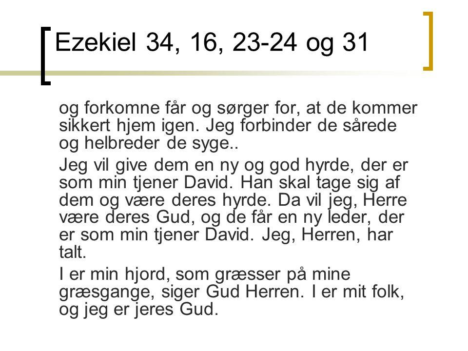 Ezekiel 34, 16, 23-24 og 31 og forkomne får og sørger for, at de kommer sikkert hjem igen.