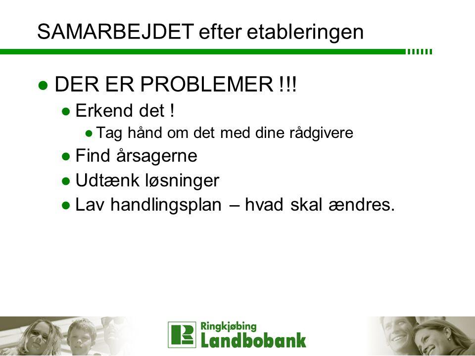 SAMARBEJDET efter etableringen ●DER ER PROBLEMER !!.
