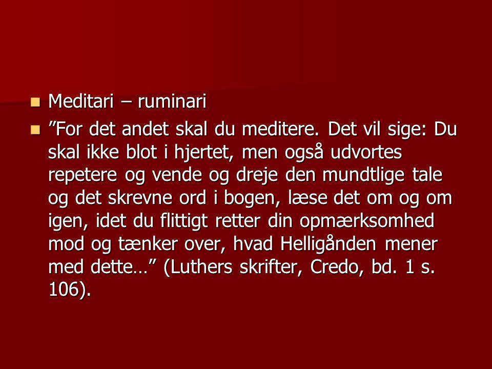  Meditari – ruminari  For det andet skal du meditere.