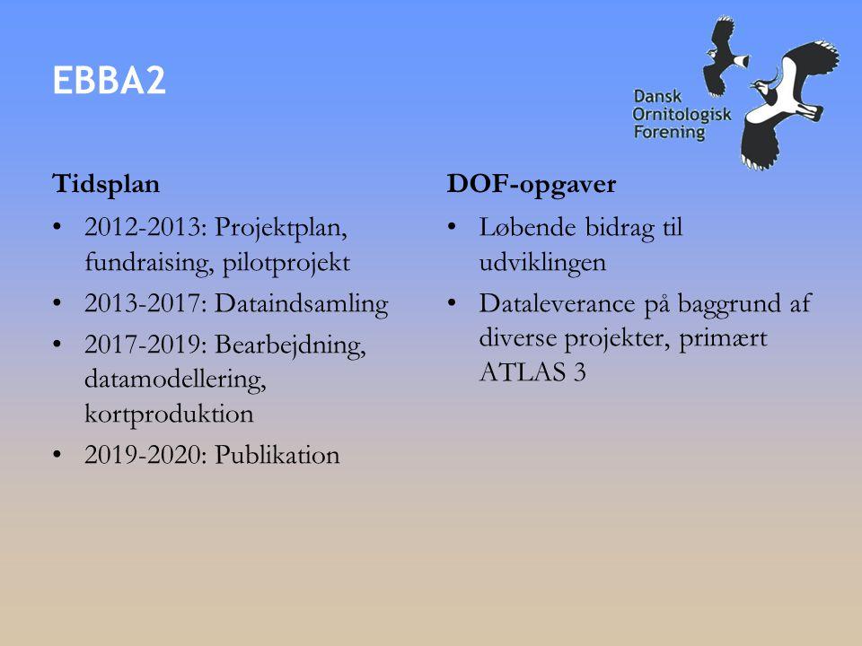 EBBA2 Tidsplan •2012-2013: Projektplan, fundraising, pilotprojekt •2013-2017: Dataindsamling •2017-2019: Bearbejdning, datamodellering, kortproduktion •2019-2020: Publikation DOF-opgaver •Løbende bidrag til udviklingen •Dataleverance på baggrund af diverse projekter, primært ATLAS 3