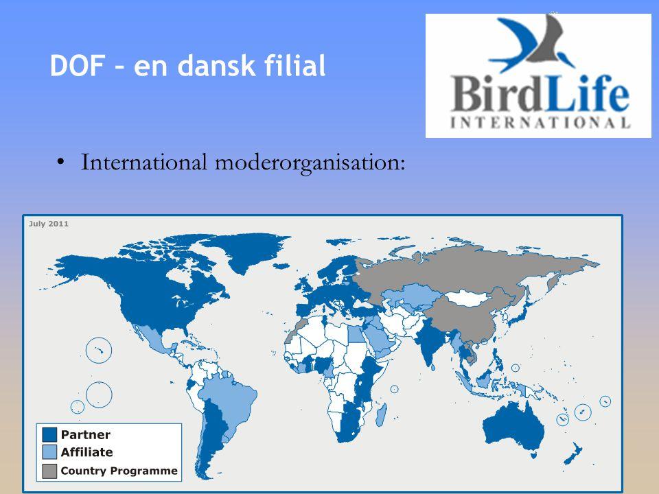 •International moderorganisation: DOF – en dansk filial