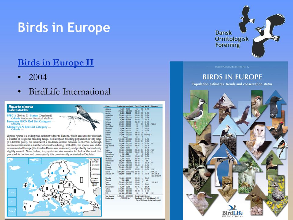 Birds in Europe Birds in Europe II •2004 •BirdLife International