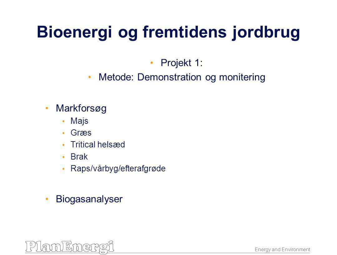 Energy and Environment Bioenergi og fremtidens jordbrug • Projekt 1: • Metode: Demonstration og monitering • Markforsøg • Majs • Græs • Tritical helsæd • Brak • Raps/vårbyg/efterafgrøde • Biogasanalyser