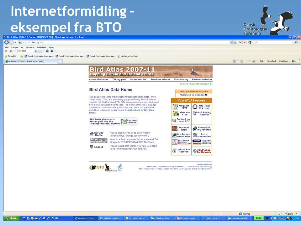 Internetformidling – eksempel fra BTO
