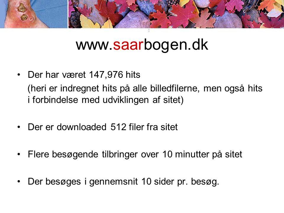 www.saarbogen.dk •Der har været 147,976 hits (heri er indregnet hits på alle billedfilerne, men også hits i forbindelse med udviklingen af sitet) •Der er downloaded 512 filer fra sitet •Flere besøgende tilbringer over 10 minutter på sitet •Der besøges i gennemsnit 10 sider pr.