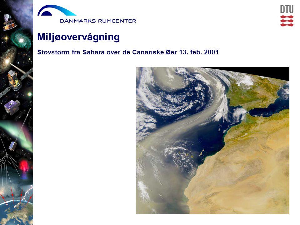Miljøovervågning Støvstorm fra Sahara over de Canariske Øer 13. feb. 2001