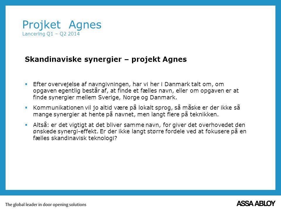 Skandinaviske synergier – projekt Agnes  Efter overvejelse af navngivningen, har vi her i Danmark talt om, om opgaven egentlig består af, at finde et fælles navn, eller om opgaven er at finde synergier mellem Sverige, Norge og Danmark.