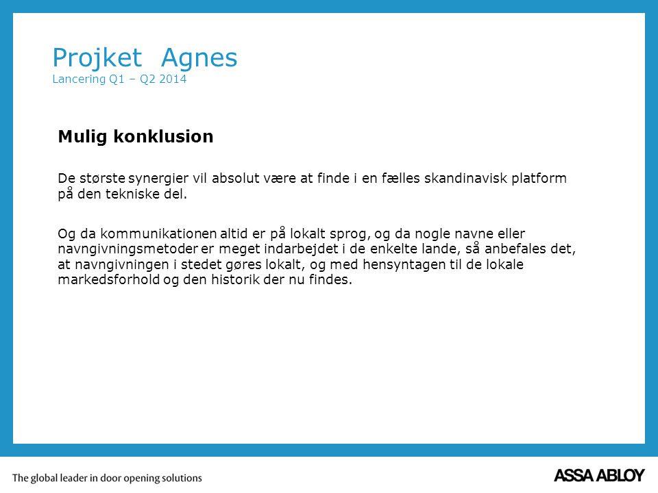 Mulig konklusion De største synergier vil absolut være at finde i en fælles skandinavisk platform på den tekniske del.