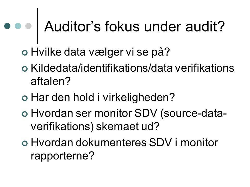 Auditor's fokus under audit. Hvilke data vælger vi se på.