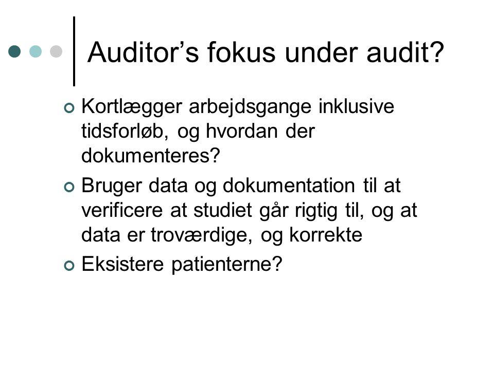 Auditor's fokus under audit.