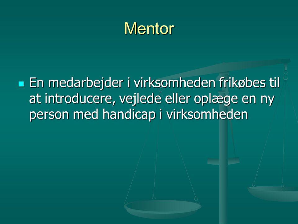 Mentor  En medarbejder i virksomheden frikøbes til at introducere, vejlede eller oplæge en ny person med handicap i virksomheden