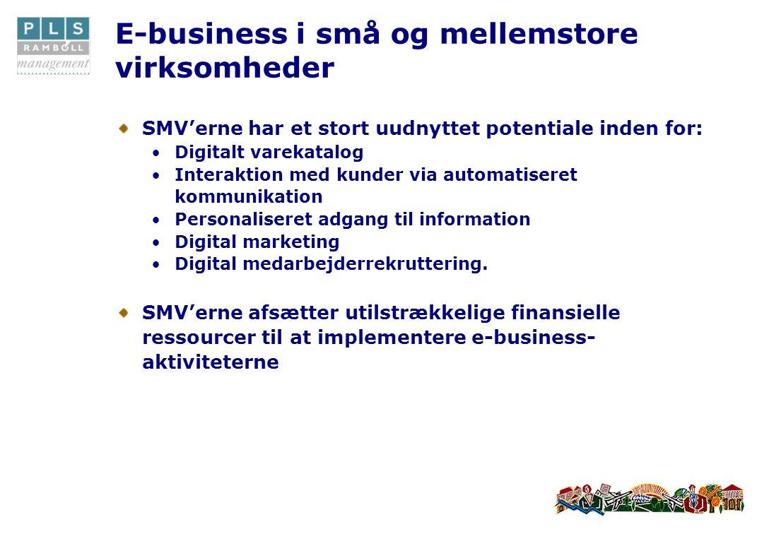 E-business i små og mellemstore virksomheder SMV'erne har et stort uudnyttet potentiale inden for: •Digitalt varekatalog •Interaktion med kunder via automatiseret kommunikation •Personaliseret adgang til information •Digital marketing •Digital medarbejderrekruttering.